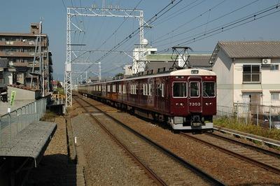 20051105c.jpg