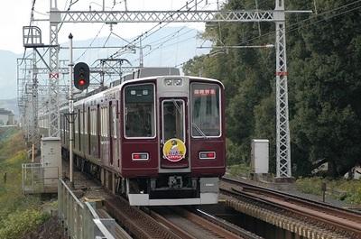 20051120b.jpg