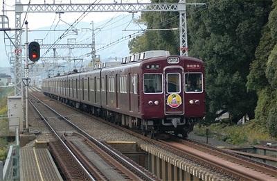 20051120c.jpg