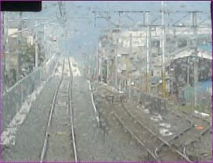 20080331a.jpg