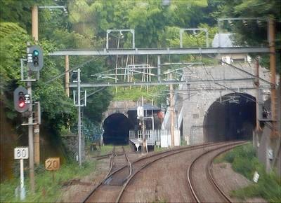 20080709c.jpg