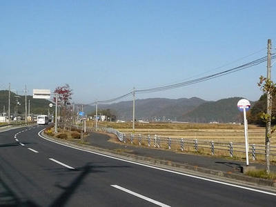 20101130g.jpg