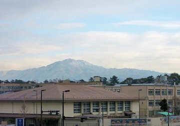 20110111b2.jpg