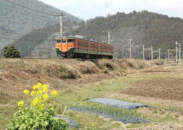 20110330f.jpg