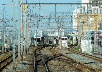 20110624b.jpg