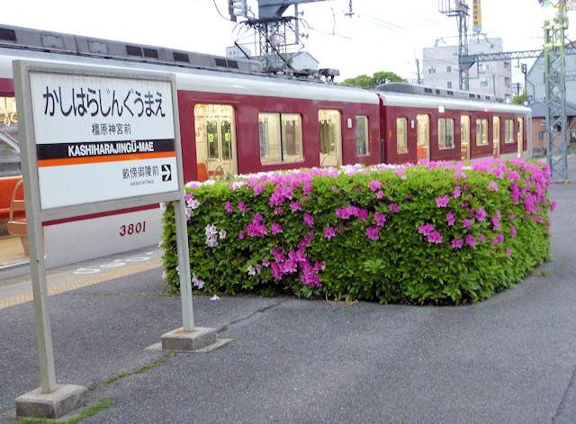 http://kokyu.sakura.ne.jp/sblo_files/kokyu/image/20120502b.jpg