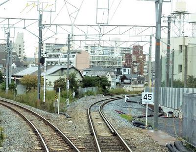 20131111a.jpg